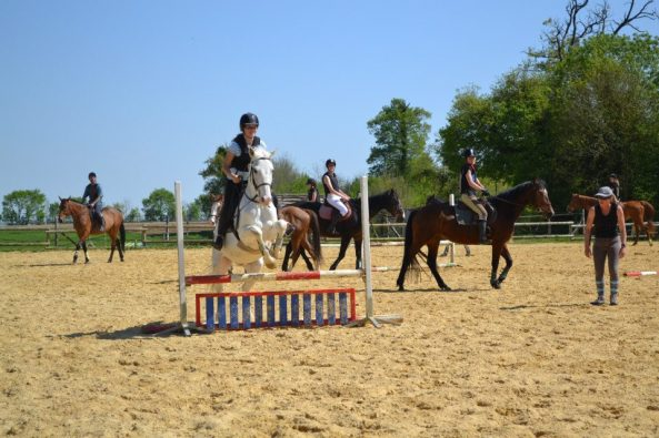 equitation saintes cours cheval