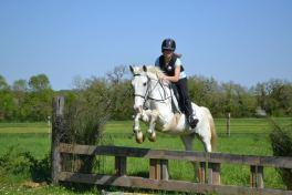 équitationsaintescross174