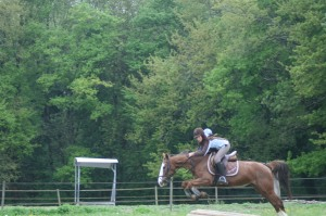 club hippique cross2