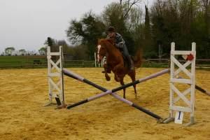 chalenge équitation 5