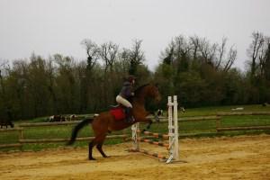 chalenge équitation2