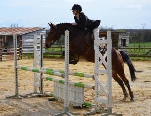 ambre 1 équitation