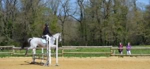 Elisa  Princesse équitation saintes